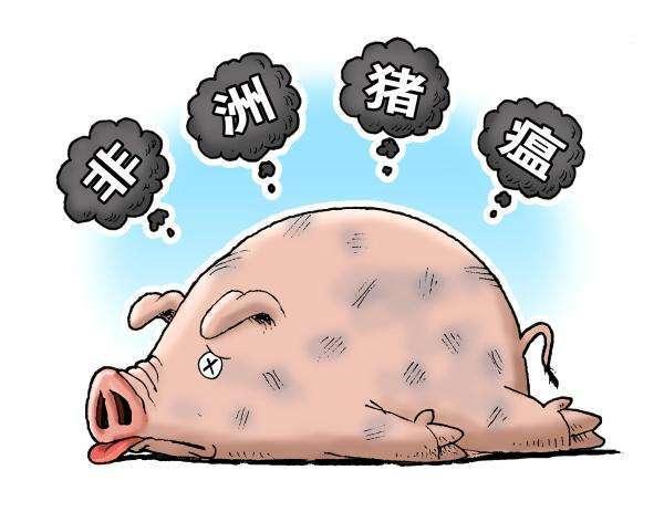 吴晓东博士:非洲猪瘟快速诊断技术及疫苗研究进展