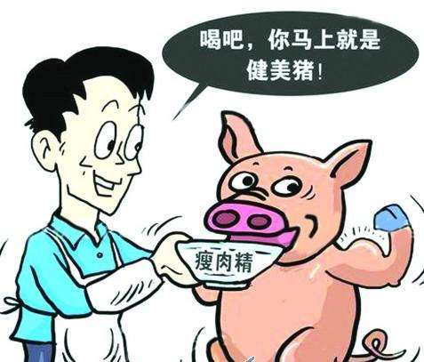 加拿大输华猪肉检出瘦肉精残留 中国叫停第三家加企猪肉输华