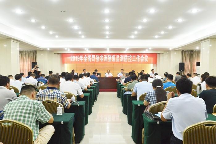 河南省野猪非洲猪瘟监测防控会议召开,严防非瘟在野猪中传播