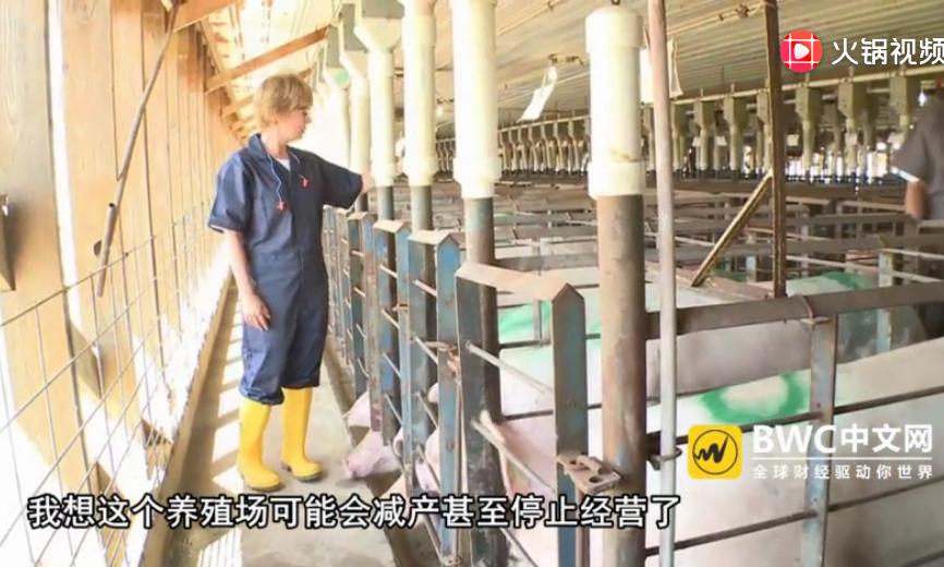 中国买家停购美国猪肉后,有新进展,再取消3247吨美猪肉订单