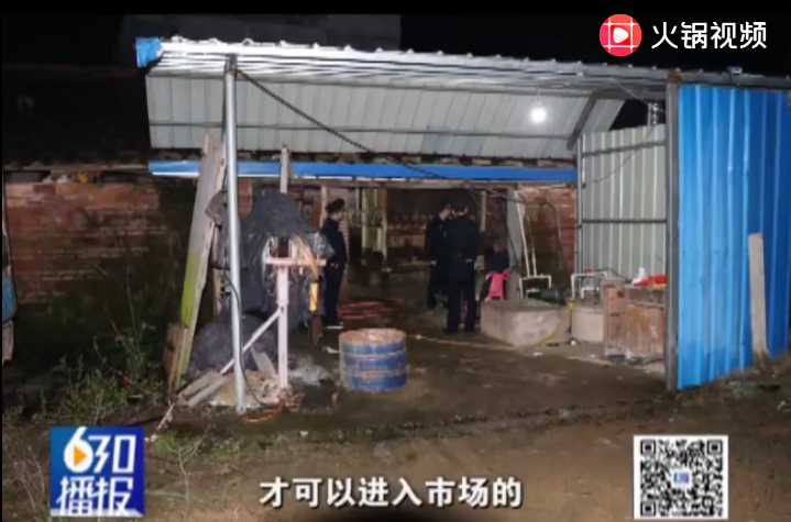 赣州南康区:夫妻无证私宰千头生猪被刑拘