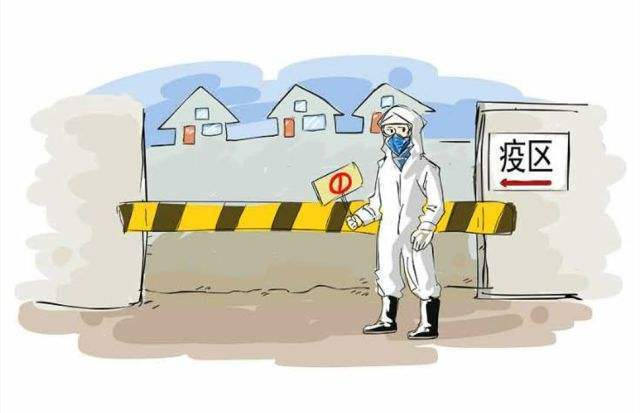 26省解除疫区封锁,生猪调运逐步恢复