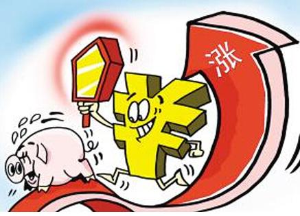 """山东东明:生猪价格首次突破""""九元"""""""