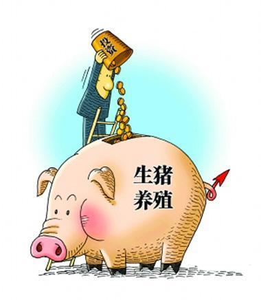 河南瓦岗乡:贫困户贷款买猪,企业代养助增收