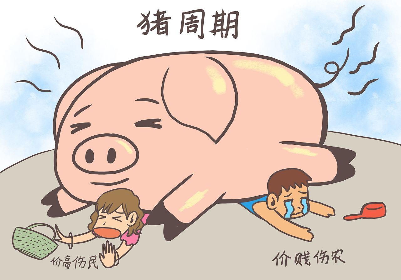 未来一年猪价预测,产能变化规律性与本轮猪周期的独特之处