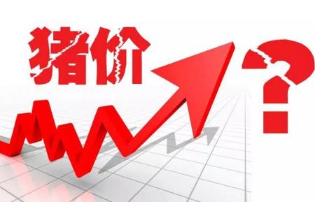 下月起猪价或开启阶段性快速上涨