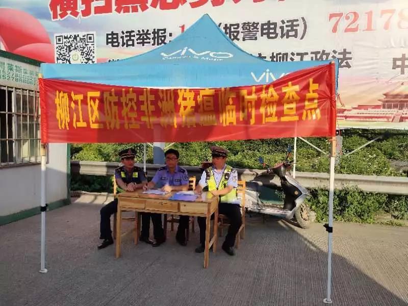 柳州柳江区强化生猪及生猪产品调运监管,高速口设置检查点