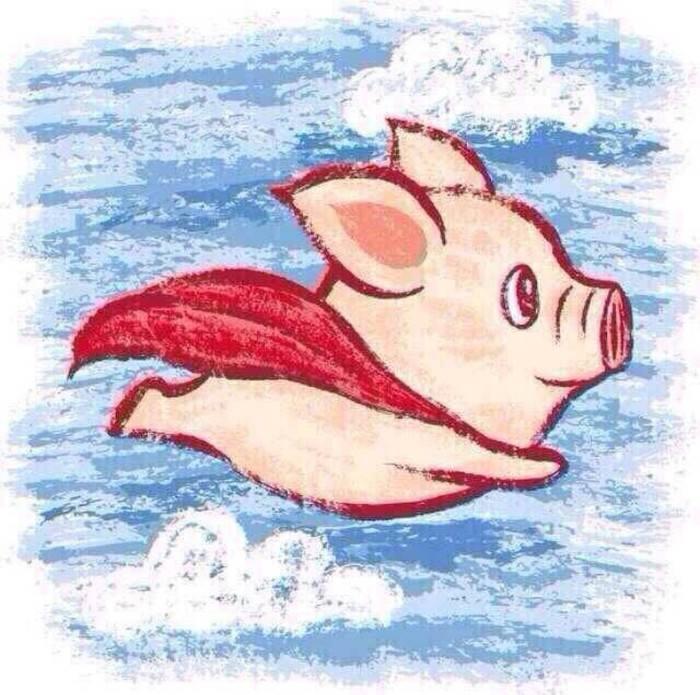 猪肉上的中国:一家三口一年吃掉一头猪