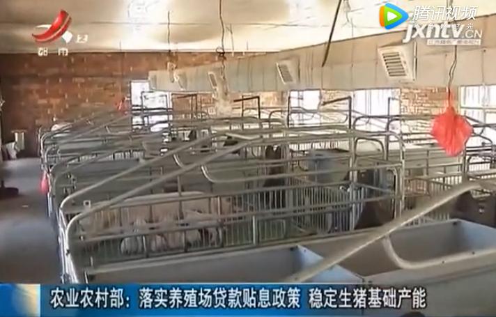 农业农村部:落实养殖场贷款贴息政策 稳定生猪基础产能