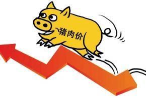 猪肉价格九月或将松动,短期可能还将上涨