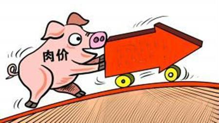 6月30日全国生猪价格小幅回落,宁夏一屠宰场发生非瘟疫情