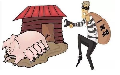 男子窜到长汀某养猪场偷盗12头生猪,被判刑7个月罚款1万