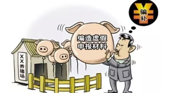 生猪补贴拉下一个市31名官员,涉案金额超7000万元