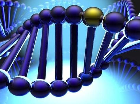 使用土霉素治疗的断奶仔猪粪便中抗生素耐药基因的动态变化