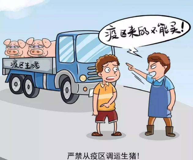 是谁把中国猪业搞的一地鸡毛?(连载2)