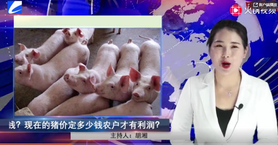 猪肉价格上涨养殖户却不挣钱?现在的猪价定多少钱农户才有利润?