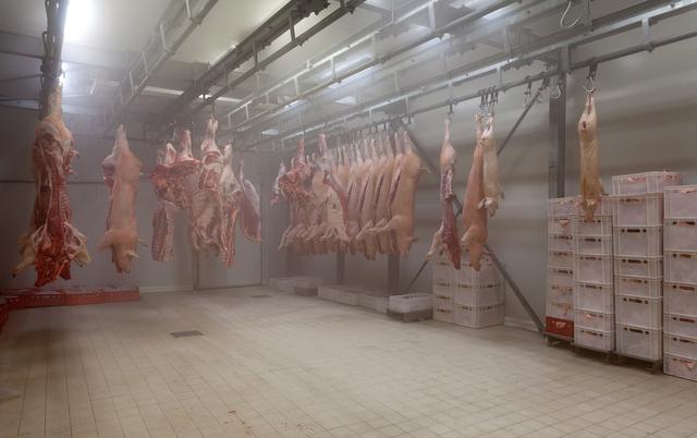 非瘟病毒在冻肉中可以存活1000天? 养猪人呼吁国家严查冷库