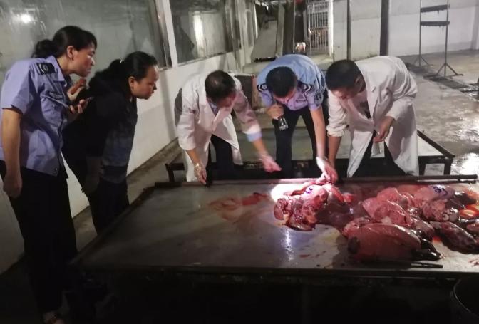 贵州铜仁市县两级突击夜查德江县生猪定点屠宰场