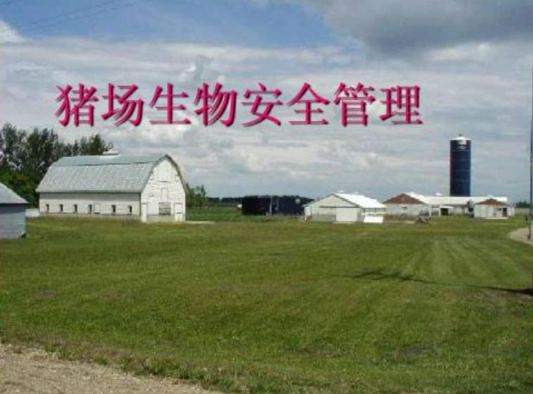 猪场的生物安全解决方案,猪场灾后复产不难成功