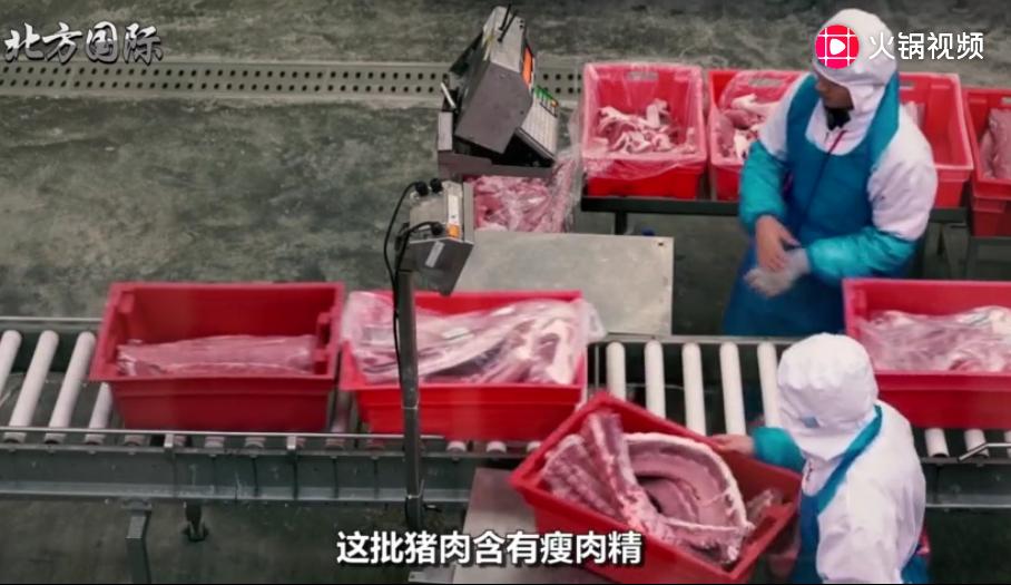 加拿大出现问题后,此国将24万吨猪肉运向中国,或成最大赢家