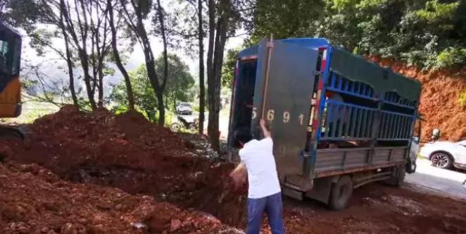 安徽宿松拦获装载6头病死猪车辆,驾驶员无合法手续