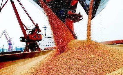 豆粕最新行情又被唱衰,天气炒作成为未来价格上涨的希望