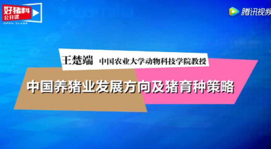 第4期:中国养猪业发展方向及猪育种策略