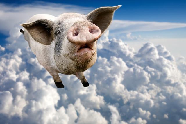 超级猪周期降临 高盛给出温氏股份目标价58.8元 目标股价突破历史巅峰