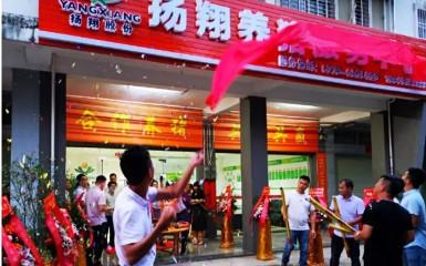 """广西贵港翔养猪赋能服务中心 """"铁桶猪场"""",就是要""""刚""""!"""