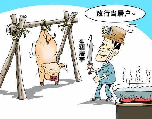 山东淄博19家生猪定点屠宰企业获市政府批复,内含屠企名单!