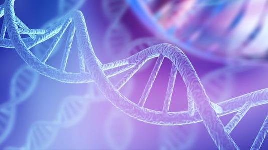 如何应用基因编辑技术,快速精准检测非洲猪瘟病毒?