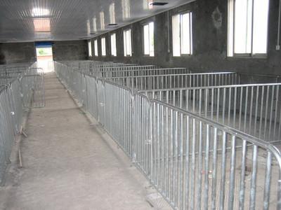 深圳某养猪场遇怪盗:猪还在,猪圈的围栏却没了
