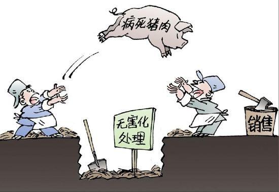 永远告别猪肉谣言!雅安一网民发布病死猪被挖出不实消息,被处罚款500元