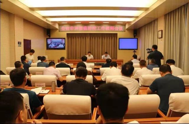 河北:召开视频会议全力打好非洲猪瘟疫情防控持久战