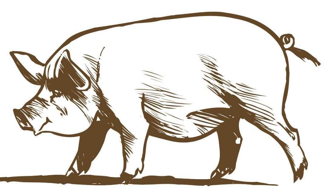昆明市:启动生猪屠宰环节非洲猪瘟毒监督检测工作