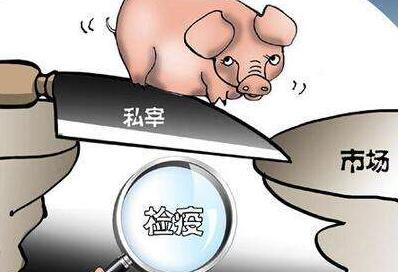 益阳市安化县查获一起私屠滥宰生猪案,扣押10头生猪,抓了9个人
