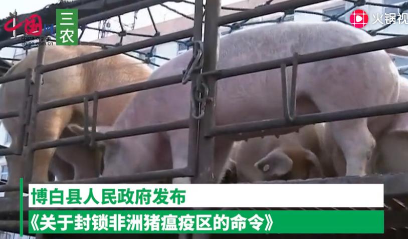广西玉林博白县非洲猪瘟疫区解除封锁