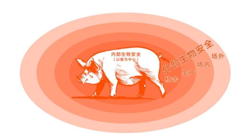 化世鹏:应以100%严谨态度做好猪场生物安全工作