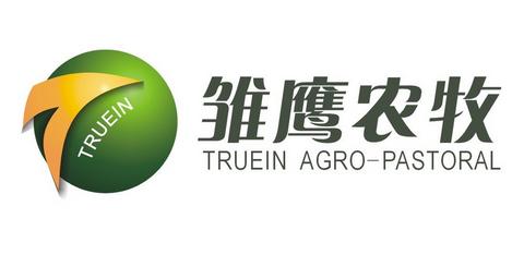 *ST雏鹰与供应商签订合作协议 合资设立三家子公司开展生猪养殖