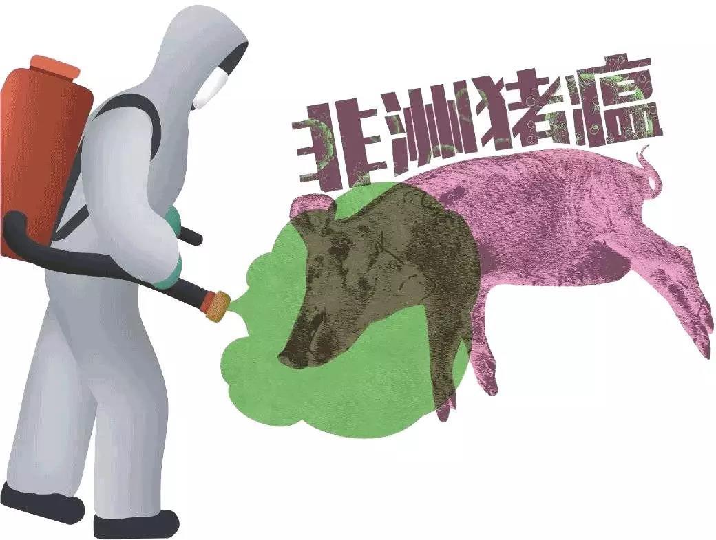 非洲猪瘟给养殖行业带来的七大影响,重塑中国生猪养殖产业格局