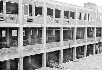 十亩土地,何以能养2.8万头猪?立体式的楼房?