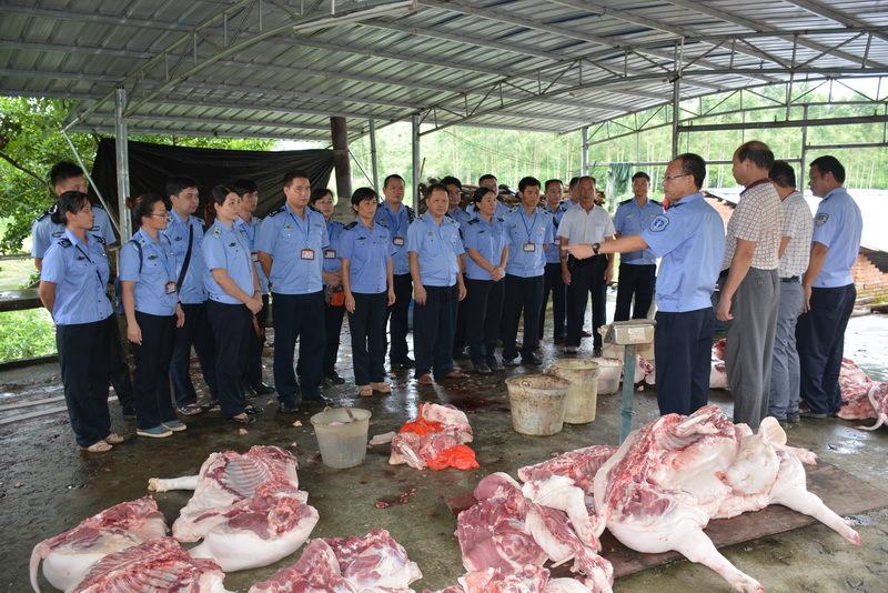 钦州市 查处生猪私宰黑窝点 猪肉及其产品共计755.5公斤