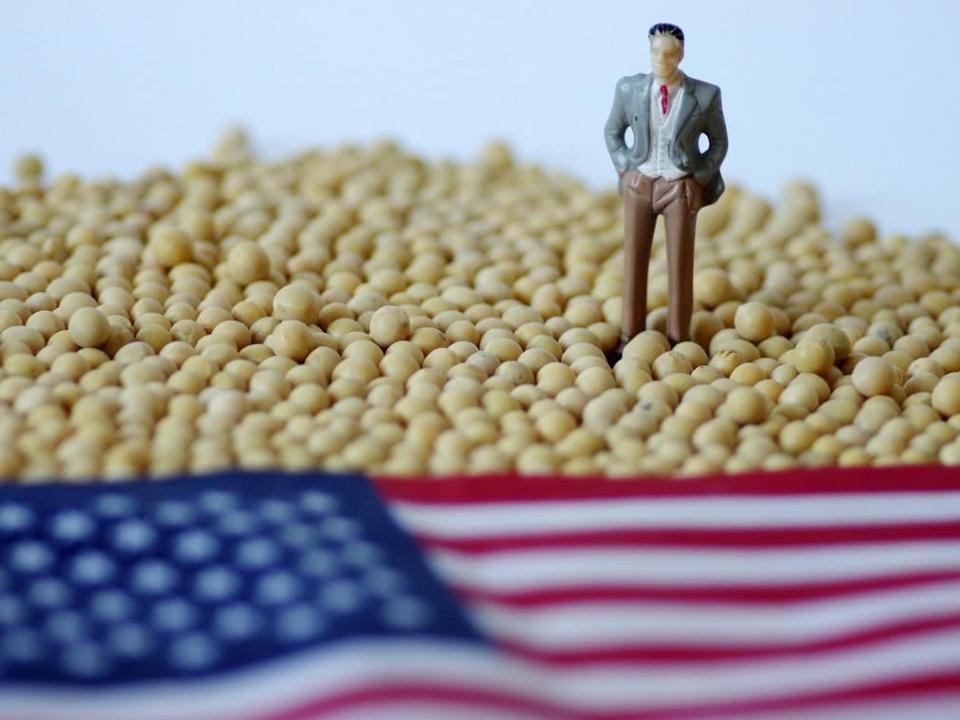中国企业采购美国农产品取得进展 数百万吨美豆正运往中国!