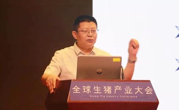 辛国昌:非洲猪瘟疫情对中国肉类生产的影响(下)