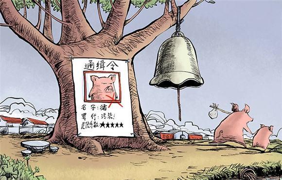 缺猪是环保带来的后遗症?环保≠缺猪,生猪养殖不注重环保等同竭泽而渔