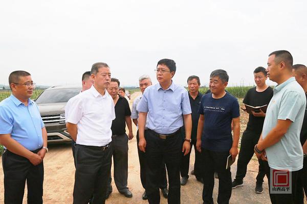高平市市长:把做强做大生猪产业作为高平农业产业第一大任务