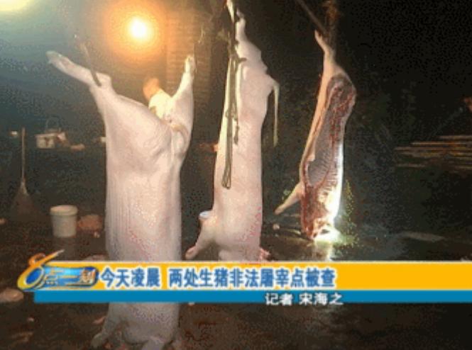 直击查处萍乡非法生猪屠宰点现场:恶臭扑鼻,污水横流