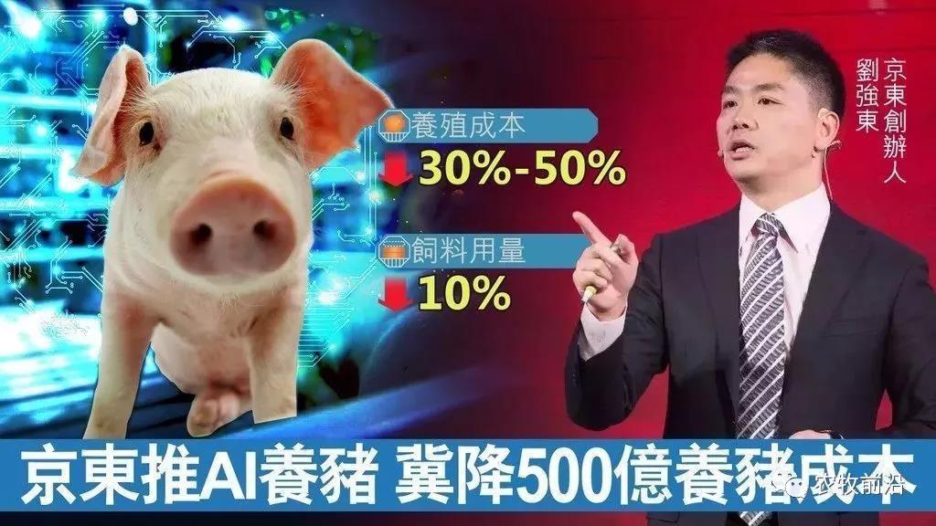 AI时代!人工智能用于养猪业,成果已经显现!