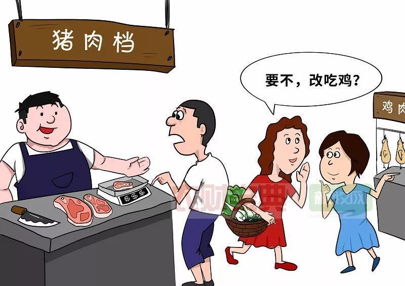 禽肉能否替代猪肉?答案没那么简单,背后的风险可能超乎想象