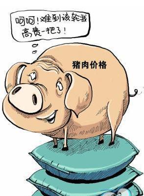 六月猪肉市场供需形势分析:生猪价格明显上涨,养殖效益继续提升